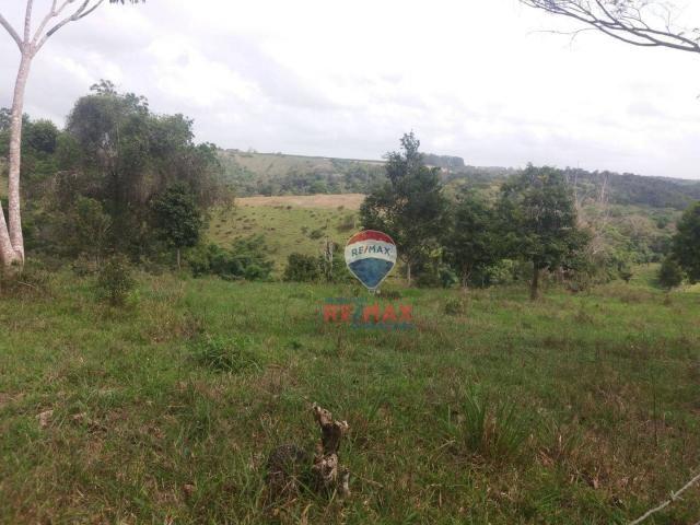 Re/max chave de ouro vende fazendas nas margens do rio buranhém - Foto 11