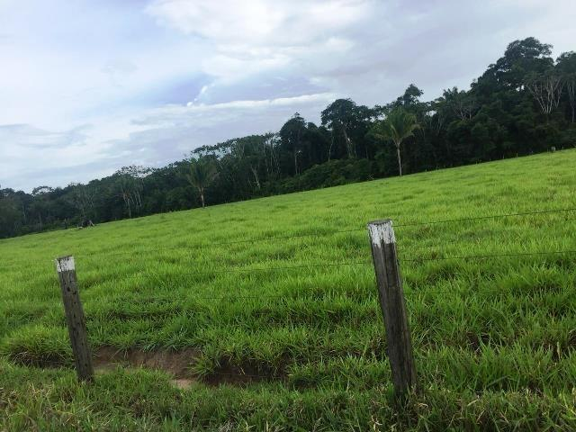Fazenda 2.904 ha Nova Monte Verde MT - Foto 2