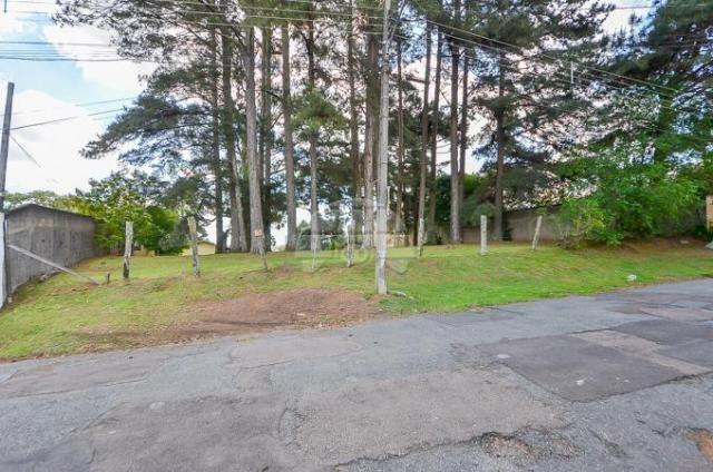 Terreno à venda em Uberaba, Curitiba cod:146250 - Foto 16