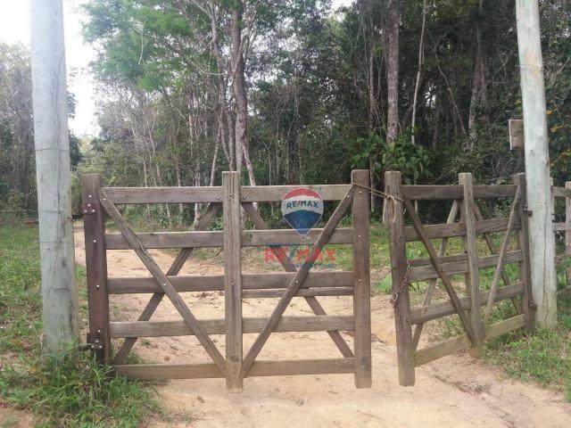 Re/max chave de ouro vende fazendas nas margens do rio buranhém - Foto 6