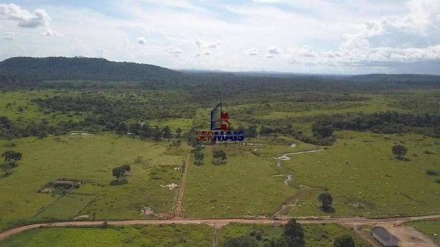Fazenda à venda, por R$ 7.350.000 - São Miguel do Guaporé/RO