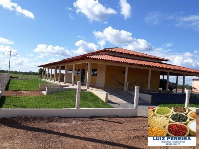 FAZENDA A VENDA DE 292 ALQUEIRÕES EM TALISMÃ - TO (Dupla Aptidão) - Foto 19