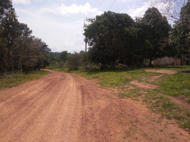 Vendo ou troco por casa em Manaus um sitio na AM010 KM 127. Mais 10KM ramal - Foto 3