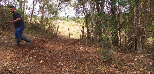 3 alqueires de terra minas gerais - Foto 6