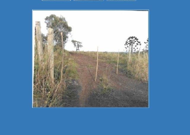 Oportunidade! Imóvel Rural com 718.680,00 m² abaixo do valor de mercado em Cerro Negro/SC. - Foto 3