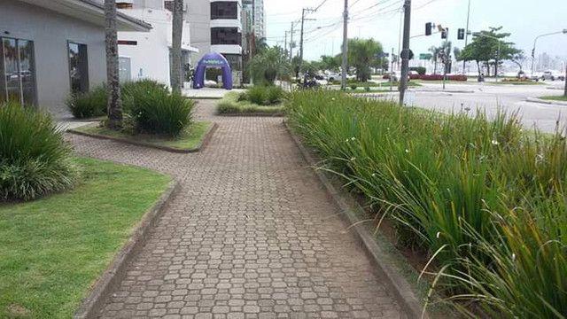 Trindade  jardinagem  - Foto 4