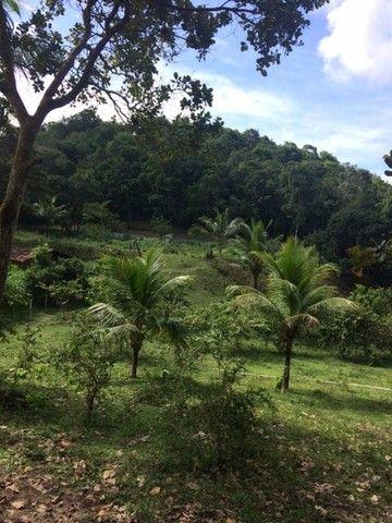Fazenda-Granja-Sítio 5,5 Hectares c/Riacho Perene na Guabiraba, Aceito Automóvel - Foto 20