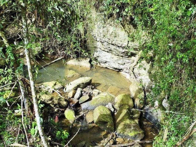 Alfredo Wagner , Serra Catarinense 8,0 hectares - Foto 4