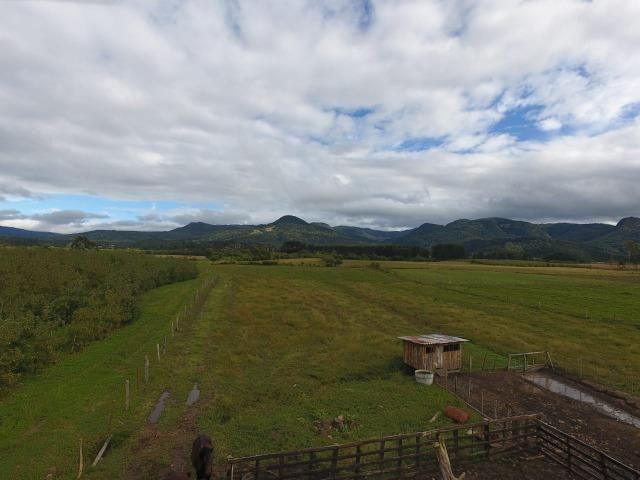 Sitio em Urubici/chácara rural em Urubici/área rural - Foto 5