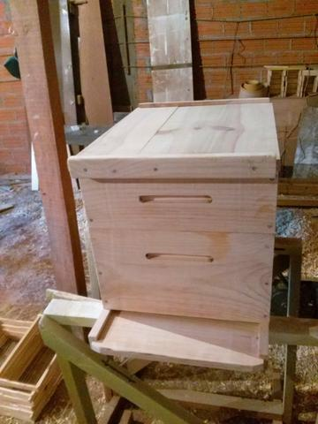 Caixas para abelhas Europa - Foto 6