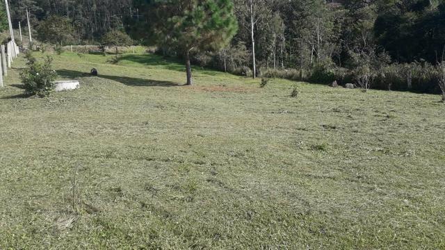 Terreno para Chácara - Foto 4