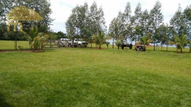 Sítio com 1 dormitório à venda, 96800 m² por R$ 590.000,00 - Zona Rural - Martinópolis/SP - Foto 17