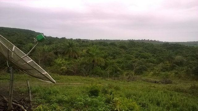 Vendo fazenda em Araçás ba - Foto 2