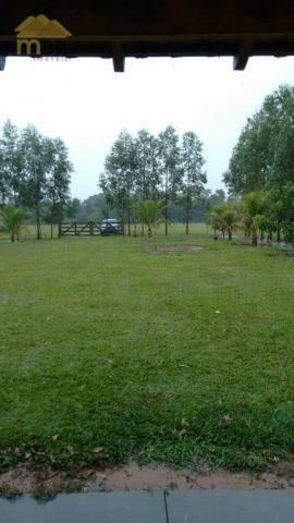 Sítio com 1 dormitório à venda, 96800 m² por R$ 590.000,00 - Zona Rural - Martinópolis/SP - Foto 16