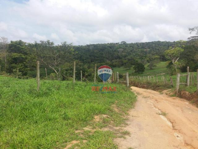 Re/max chave de ouro vende fazendas nas margens do rio buranhém - Foto 2