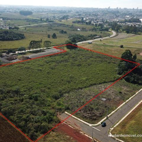 Terreno à venda em , Ponta grossa cod:MUDAR1766