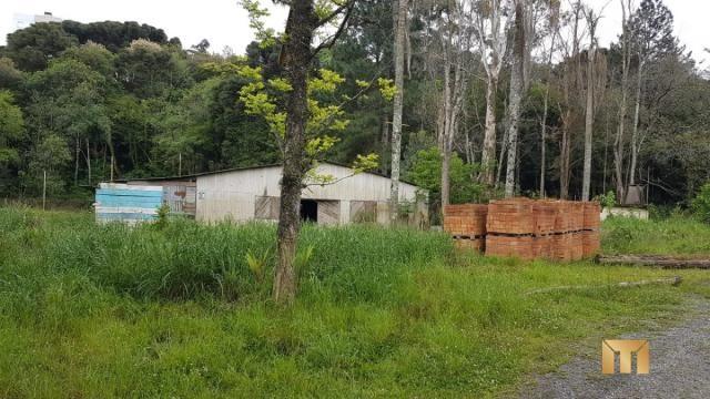 Terreno à venda em Bela vista, Caxias do sul cod:459 - Foto 3