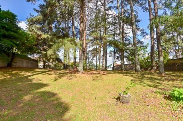 Terreno à venda em Uberaba, Curitiba cod:146250 - Foto 5