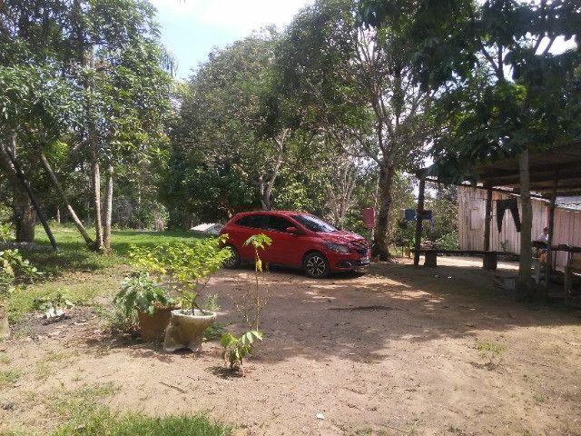 Vendo ou troco por casa em Manaus um sitio na AM010 KM 127. Mais 10KM ramal - Foto 13