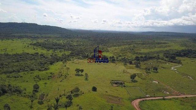 Fazenda à venda, por R$ 7.350.000 - São Miguel do Guaporé/RO - Foto 4