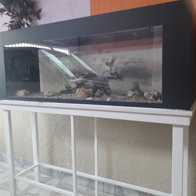 SUPER AQUÁRIO  COMPLETO 300 LT com suporte e decoração.  - Foto 4
