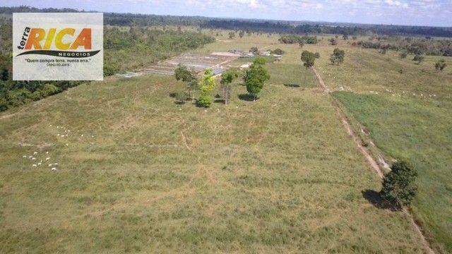 Fazenda a venda, com 129 hectares, no distrito de Triunfo/RO - Foto 19