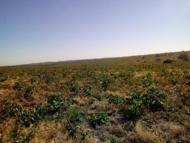 Fazenda com 1.940 hectares na estrada do manso ha 45 km de Cuiabá - Foto 17