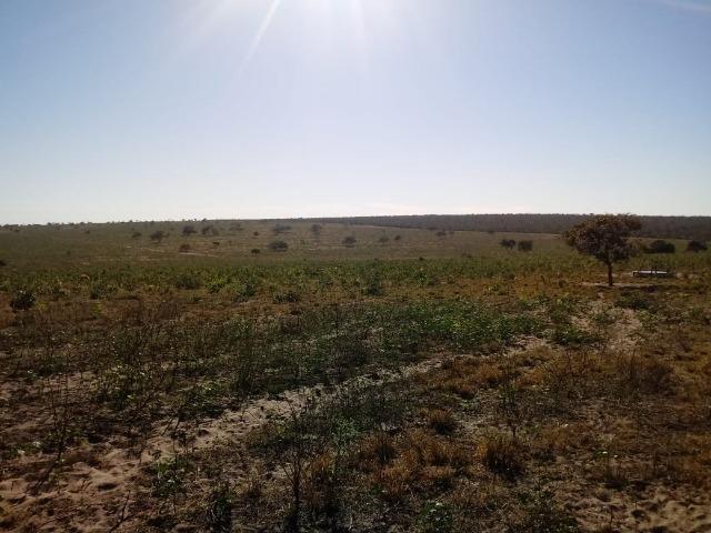 Fazenda com 1.940 hectares na estrada do manso ha 45 km de Cuiabá - Foto 3