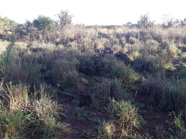 Chácara de terra boa a 9 km de Acorizal - Foto 17