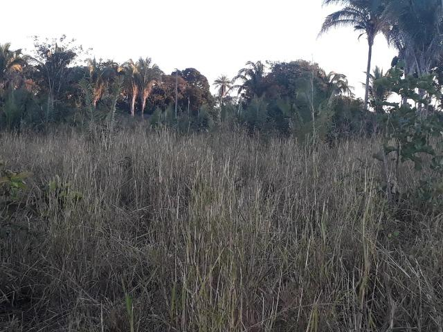 Chácara de terra boa a 9 km de Acorizal - Foto 7