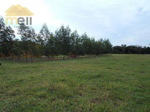 Sítio com 1 dormitório à venda, 96800 m² por R$ 590.000,00 - Zona Rural - Martinópolis/SP - Foto 18
