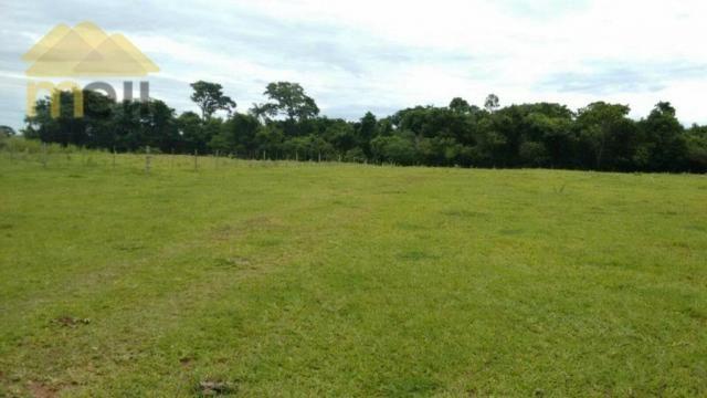 Sítio com 1 dormitório à venda, 96800 m² por R$ 590.000,00 - Zona Rural - Martinópolis/SP - Foto 13