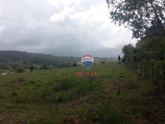 Re/max chave de ouro vende fazendas nas margens do rio buranhém - Foto 9