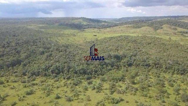 Fazenda à venda, por R$ 7.350.000 - São Miguel do Guaporé/RO - Foto 7