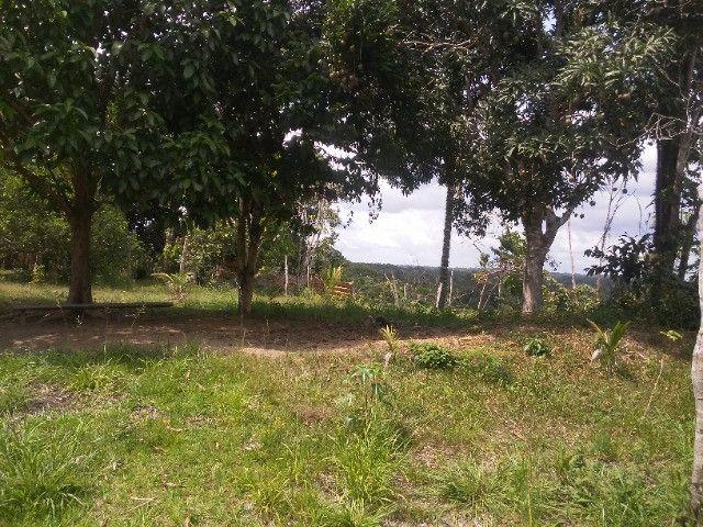Vendo ou troco por casa em Manaus um sitio na AM010 KM 127. Mais 10KM ramal - Foto 18