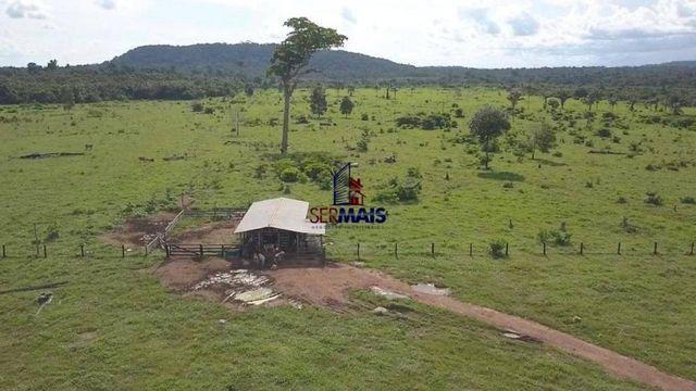 Fazenda à venda, por R$ 7.350.000 - São Miguel do Guaporé/RO - Foto 15