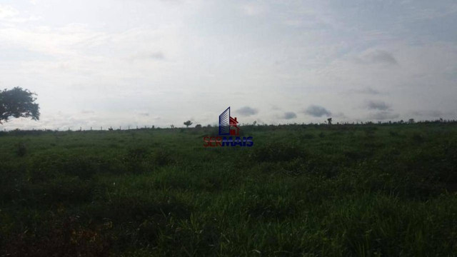Fazenda à venda, por R$ 6.000.000 - Zona Rural - Ariquemes/RO - Foto 7