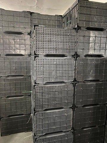 Caixa plástica cor preta nova para hortifrutti no atacado
