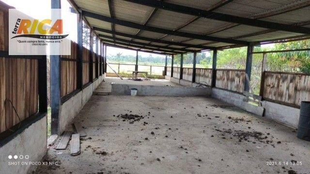 Fazenda a venda, com 129 hectares, no distrito de Triunfo/RO - Foto 8