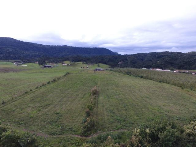 Sitio em Urubici/chácara rural em Urubici/área rural - Foto 7