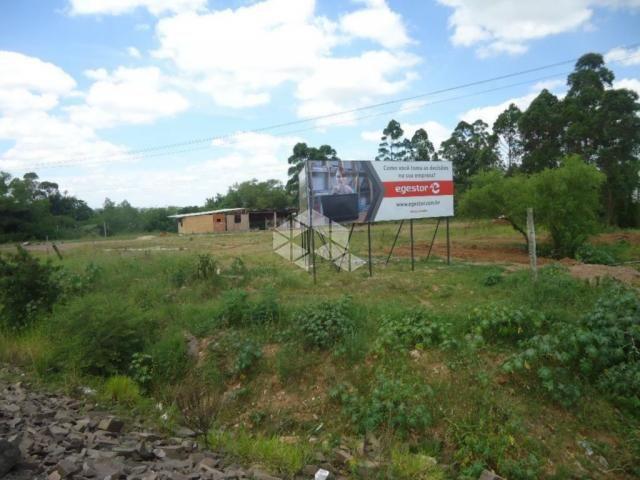 Terreno à venda em Cerrito, Santa maria cod:TE0410 - Foto 8