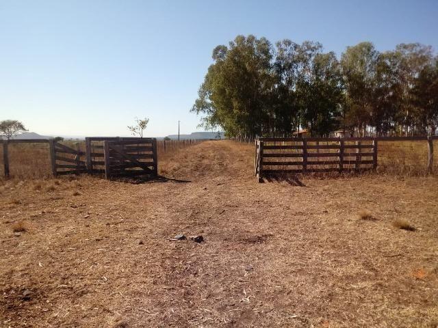 Fazenda com 1.940 hectares na estrada do manso ha 45 km de Cuiabá - Foto 7