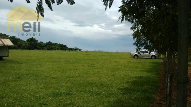 Sítio com 1 dormitório à venda, 96800 m² por R$ 590.000,00 - Zona Rural - Martinópolis/SP - Foto 14