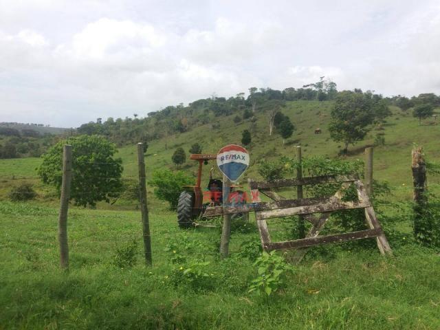 Re/max chave de ouro vende fazendas nas margens do rio buranhém - Foto 13