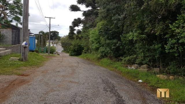 Terreno à venda em Bela vista, Caxias do sul cod:459 - Foto 5