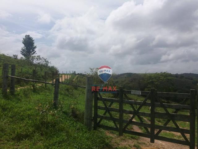 Re/max chave de ouro vende fazendas nas margens do rio buranhém - Foto 4