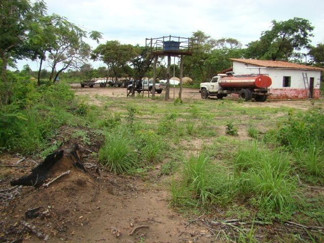 Fazenda com 1.006 hectares, com sede, aberta, para soja e milho - Foto 18