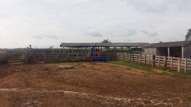 Fazenda à venda, por R$ 6.000.000 - Zona Rural - Ariquemes/RO - Foto 4