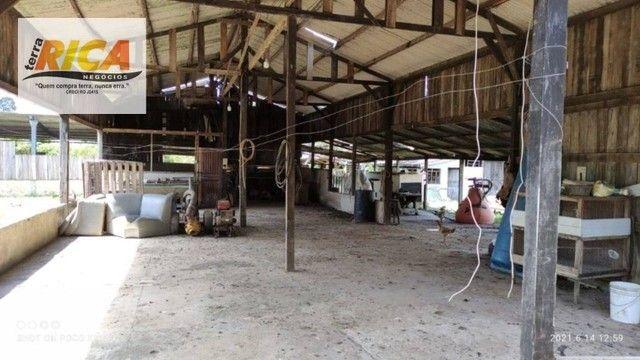 Fazenda a venda, com 129 hectares, no distrito de Triunfo/RO - Foto 7