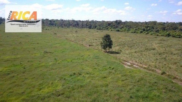 Fazenda a venda, com 129 hectares, no distrito de Triunfo/RO - Foto 5
